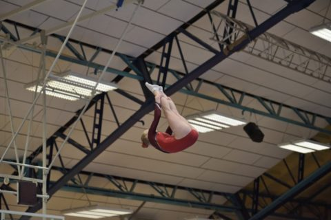 Deutsche Meisterschaft 2019 in Dessau - Fiona